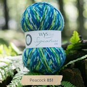West Yorkshire Spinners Signature 4 Ply - Country Birds PEACOCK