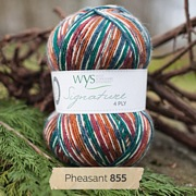West Yorkshire Spinners Signature 4 Ply - Country Birds PHEASANT