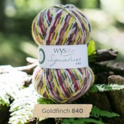 West Yorkshire Spinners Signature 4 Ply - Country Birds GOLDFINCH