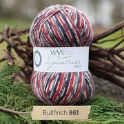 West Yorkshire Spinners Signature 4 Ply - Country Birds BULLFINCH