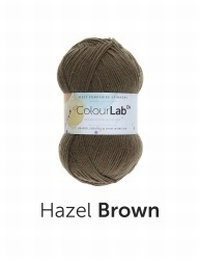 West Yorkshire Spinners  Colour Lab DK Hazel Brown (491)