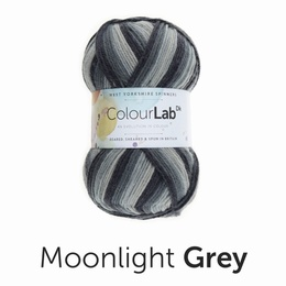 West Yorkshire Spinners Colour Lab DK Moonlight Grey (895)