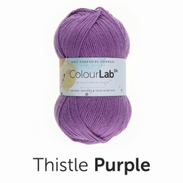 West Yorkshire Spinners Colour Lab DK Thistle Purple (717)