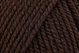 Stylecraft Special Aran Dark Brown 1004