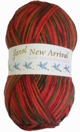Woolcraft New Arrivals Random Dk 200g 328 Tuscany