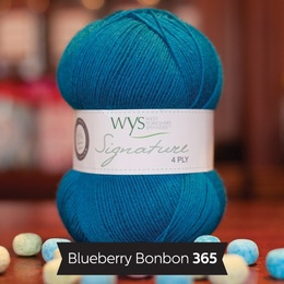 WYS Blueberry Bonbon 365