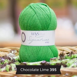 WYS Chocolate Lime 395