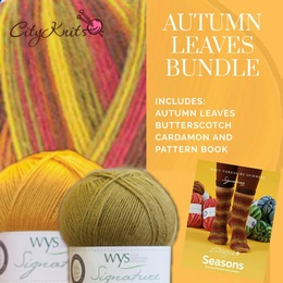 Winwick Mum WYS 4 Ply Autumn Leaves BUNDLE