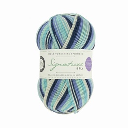 Winwick Mum WYS 4 Ply Winter Icicle 878