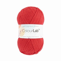WYS Colour Lab DK Coral Crush 361