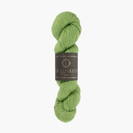 West Yorkshire Spinners Exquisite 4ply Eden 401
